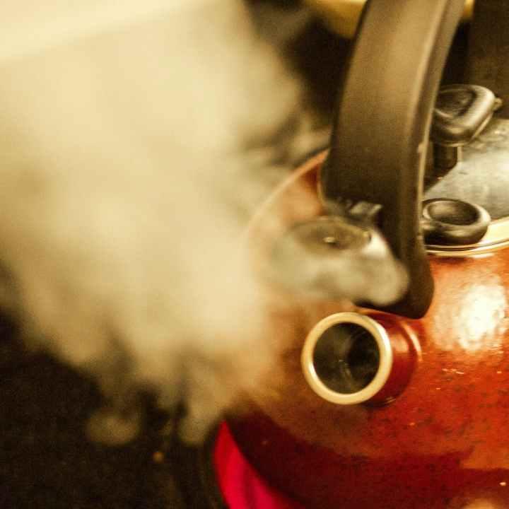The Tea Pot Snarled At The Sugar Dish